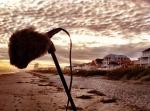 mic-sunset